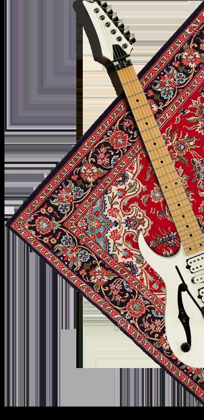 gitaar-rug